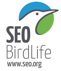 SEO / BirdLife