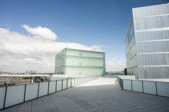 Puesta en marcha del Observatorio de la Ciencia Ciudadana en Zaragoza